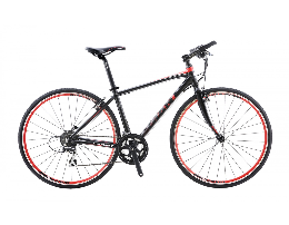Xe đạp thể thao GIANT 2014 FCR 3100