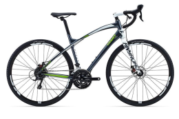 Xe đạp thể thao GIANT ANYROAD 2 2015