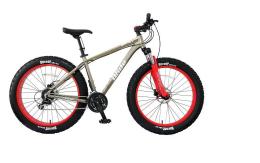 Xe đạp thể thao GIANT 2016 iRide Rocker 1